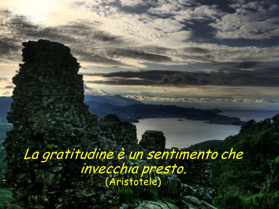 La gratitudine è la più squisita forma di cortesia. (François de la Rochefoucauld)