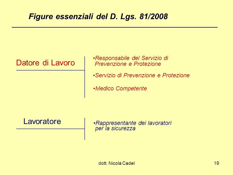 dott. Nicola Cadel19 Datore di Lavoro Lavoratore Servizio di Prevenzione e Protezione Medico Competente Responsabile del Servizio di Prevenzione e Pro