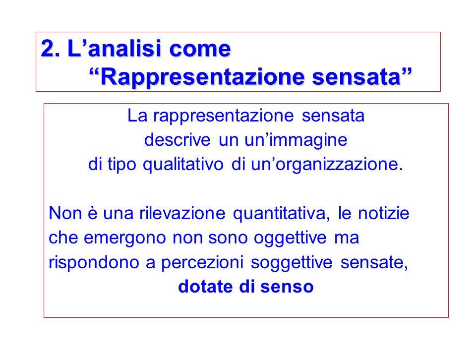 2. Lanalisi come Rappresentazione sensata La rappresentazione sensata descrive un unimmagine di tipo qualitativo di unorganizzazione. Non è una rileva