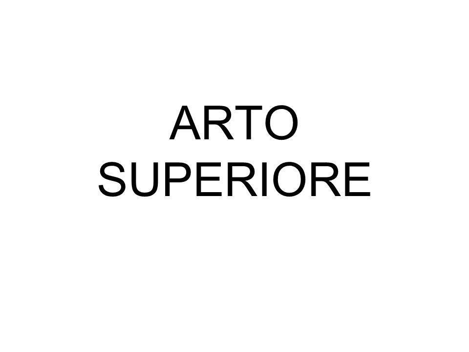 ARTO SUPERIORE