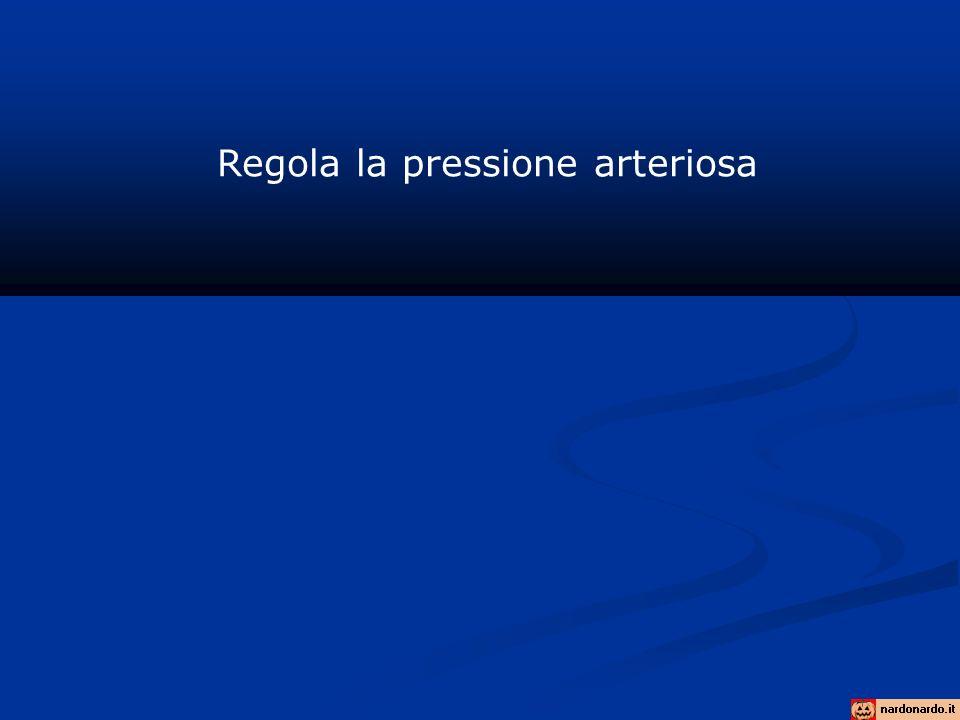 Regola la pressione arteriosa