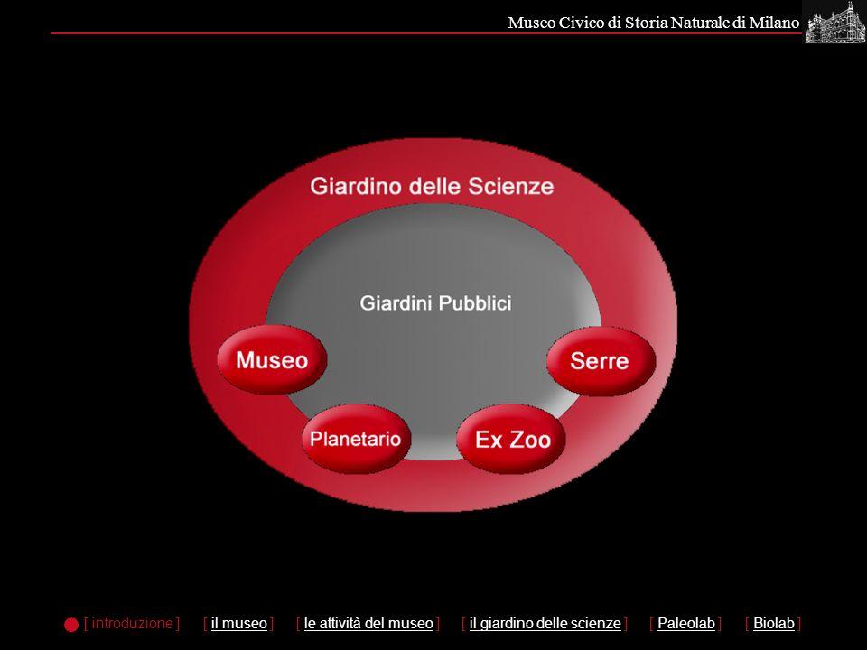 Museo Civico di Storia Naturale di Milano [ introduzione ] [ il museo ]il museo [ le attività del museo ]le attività del museo [ il giardino delle scienze ]il giardino delle scienze [ Paleolab ]Paleolab [ Biolab ]Biolab