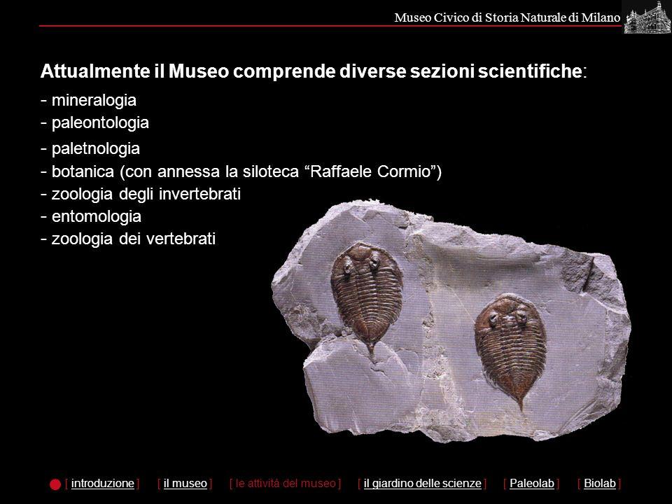 Museo Civico di Storia Naturale di Milano Nei laboratori è prevista la possibilità di esaminare direttamente reperti fossili e calchi, apprendere la metodologia di pulitura e classificazione di reperti e di preparazione dei calchi.