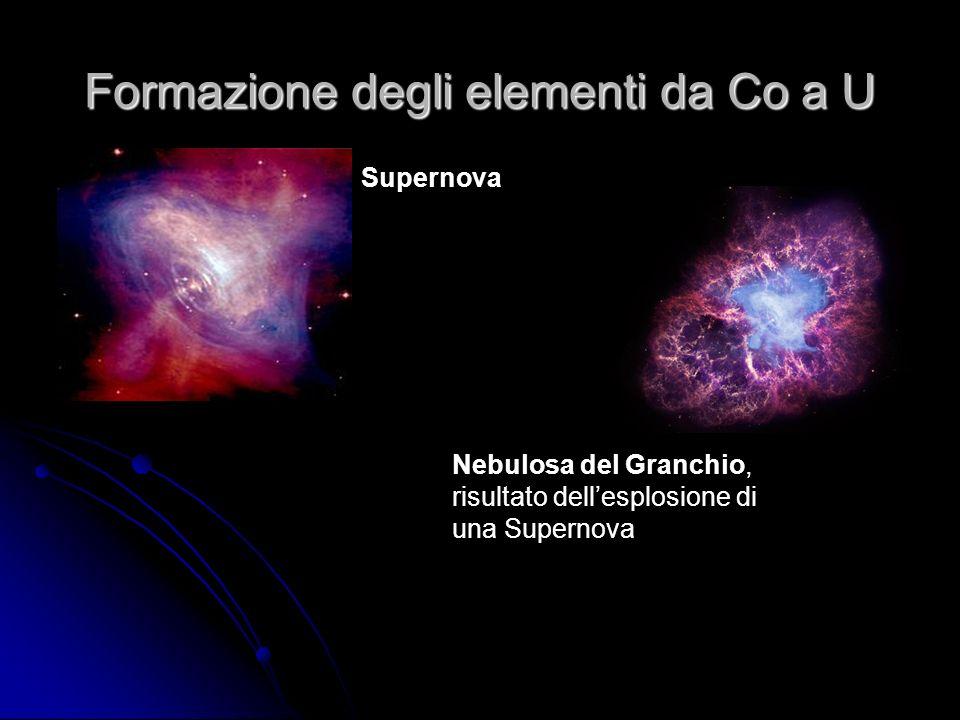 Formazione degli elementi da Co a U Supernova Nebulosa del Granchio, risultato dellesplosione di una Supernova