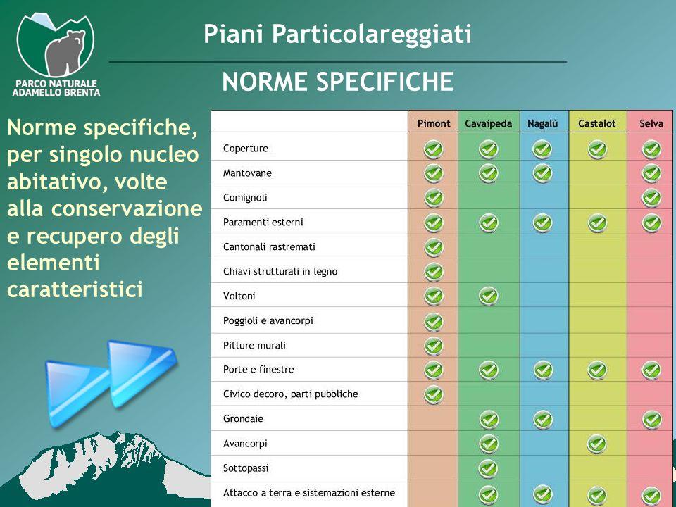 Norme specifiche, per singolo nucleo abitativo, volte alla conservazione e recupero degli elementi caratteristici Piani Particolareggiati NORME SPECIF