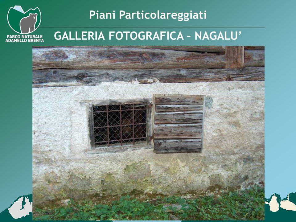 Piani Particolareggiati GALLERIA FOTOGRAFICA – NAGALU