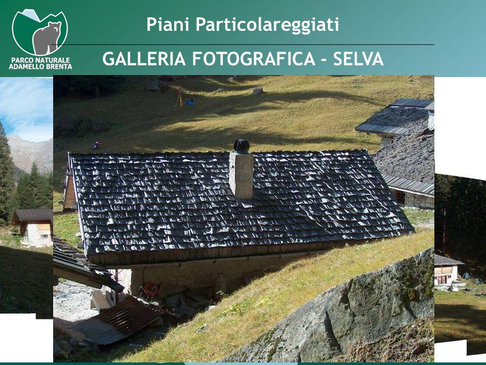 Piani Particolareggiati GALLERIA FOTOGRAFICA - SELVA