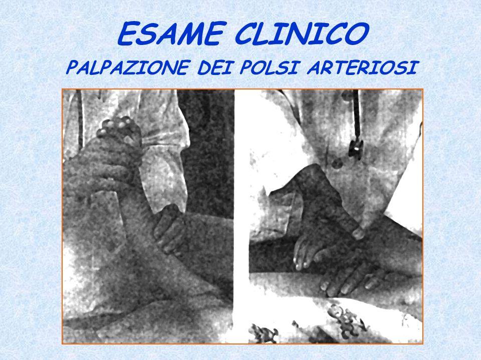 ESAME CLINICO PALPAZIONE DEI POLSI ARTERIOSI