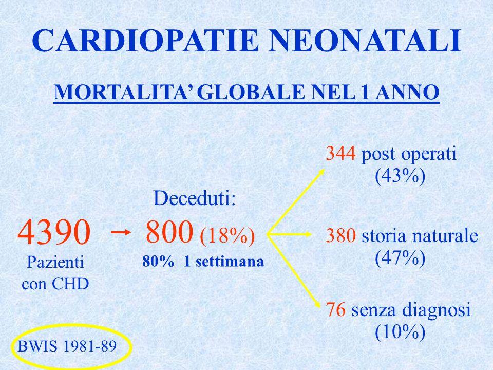 MORTALITA GLOBALE NEL 1 ANNO 344 post operati (43%) 380 storia naturale (47%) 76 senza diagnosi (10%) 80% 1 settimana BWIS 1981-89 CARDIOPATIE NEONATA