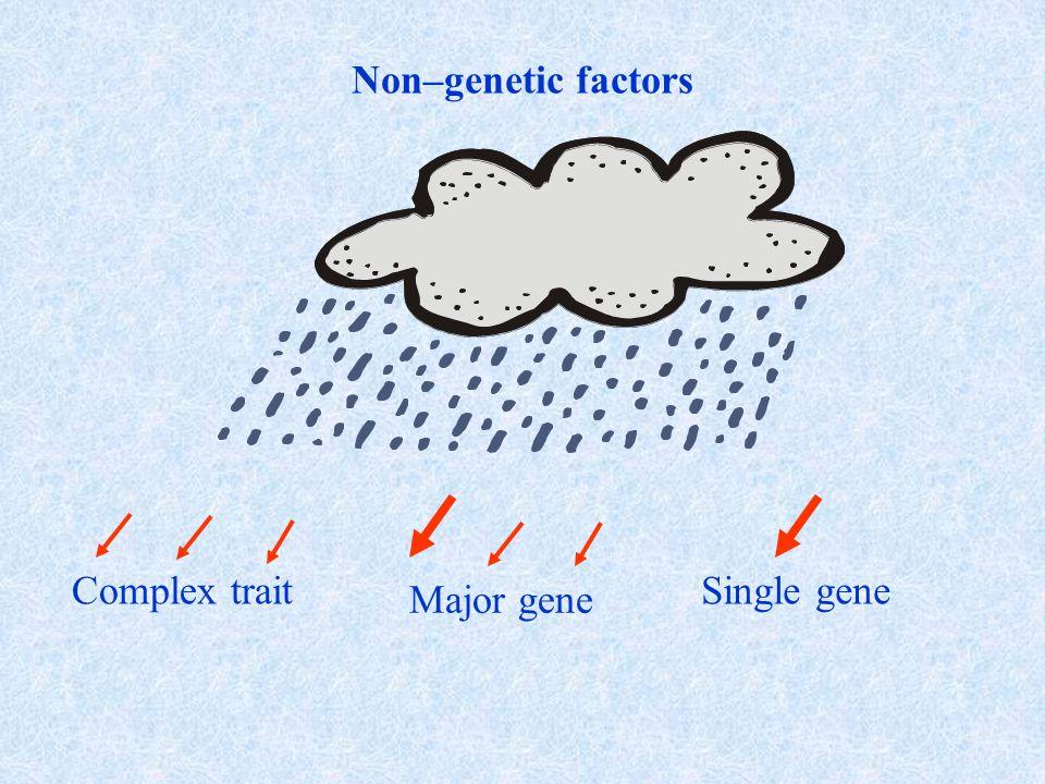 NOONAN-LEOPARD SYNDROME Prevalenza: 1:2000 nati vivi Caratteristiche cliniche: Anomalie facciali Difetti cardiaci (SPV, CMPi) Bassa statura Pterigium colli Deformità toracica Lentigginosi Mappa del gene: cromosoma 12q24 Difetto genetico:mutazione del gene PTPN11