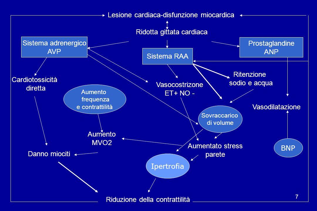 7 Lesione cardiaca-disfunzione miocardica Ridotta gittata cardiaca Sistema RAA Sistema adrenergico AVP Vasocostrizone ET+ NO - Aumentato stress parete
