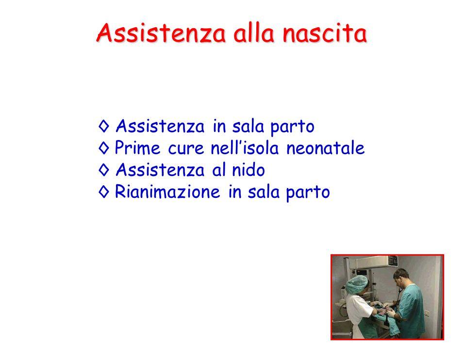 Assistenza alla nascita Assistenza in sala parto Prime cure nellisola neonatale Assistenza al nido Rianimazione in sala parto