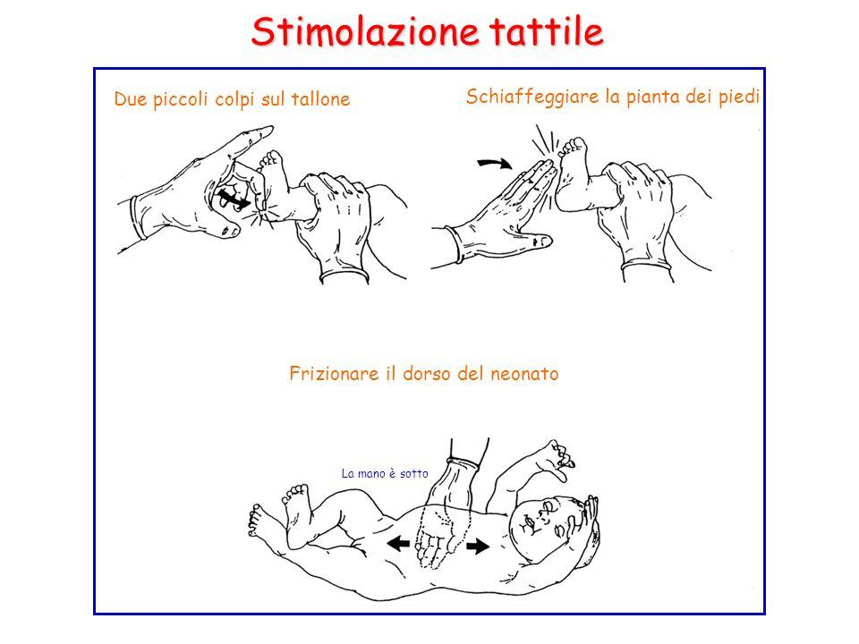 Due piccoli colpi sul tallone Schiaffeggiare la pianta dei piedi Frizionare il dorso del neonato La mano è sotto Stimolazione tattile