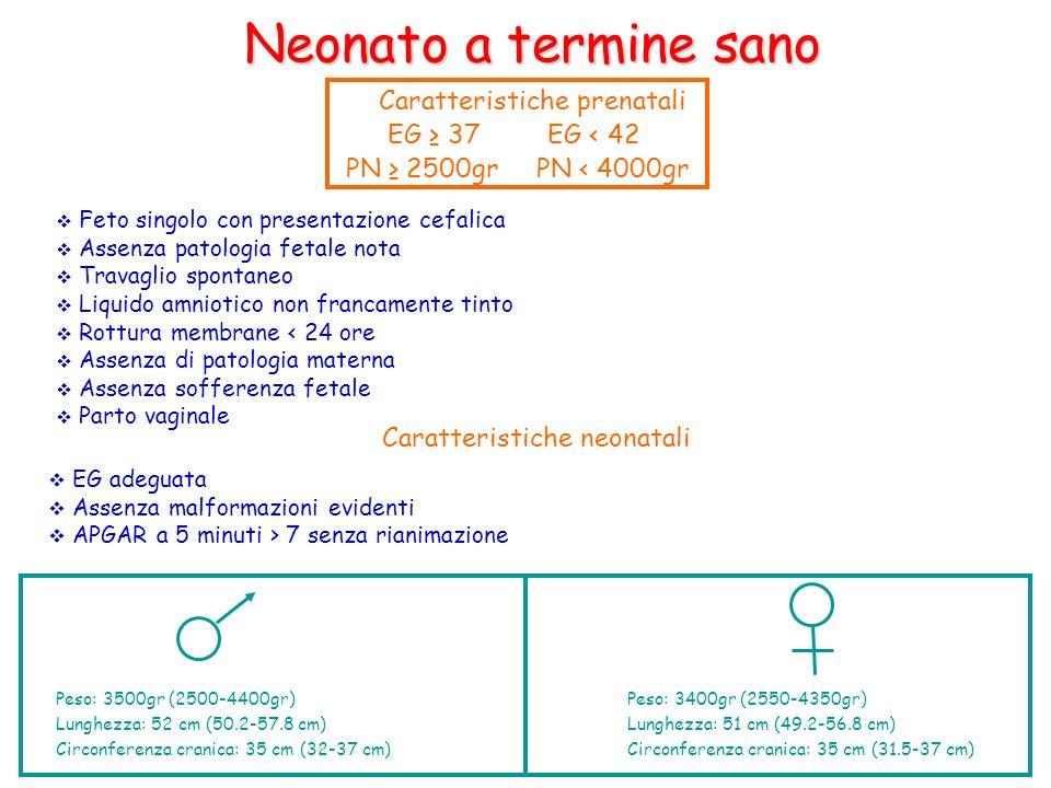 Neonato a termine sano Caratteristiche prenatali EG 37 EG < 42 Feto singolo con presentazione cefalica Assenza patologia fetale nota Travaglio spontan