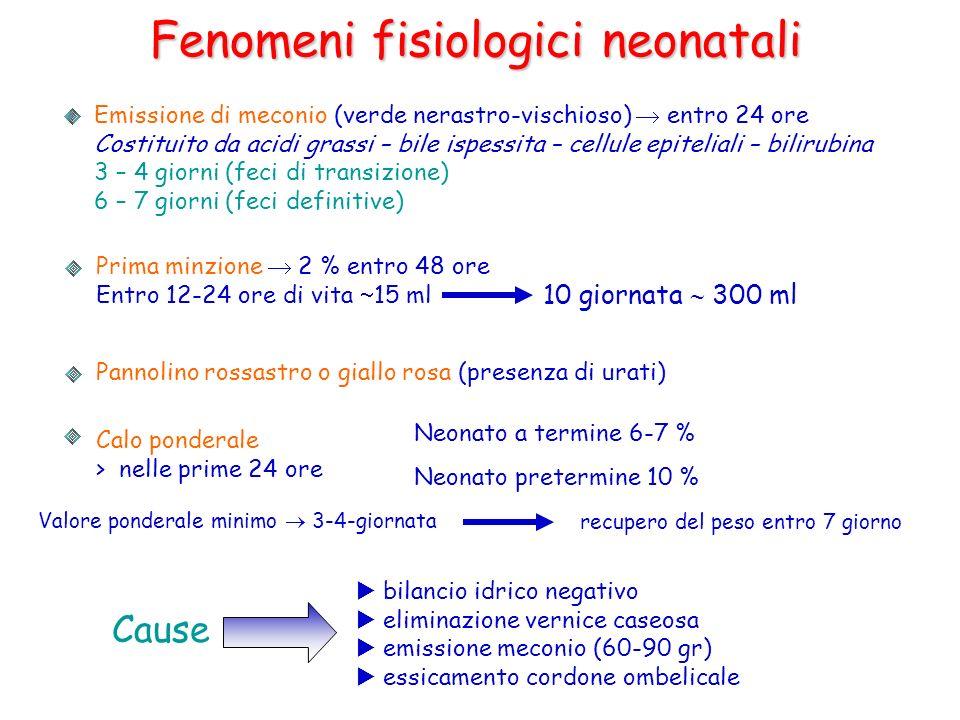 Fenomeni fisiologici neonatali Emissione di meconio (verde nerastro-vischioso) entro 24 ore Costituito da acidi grassi – bile ispessita – cellule epit