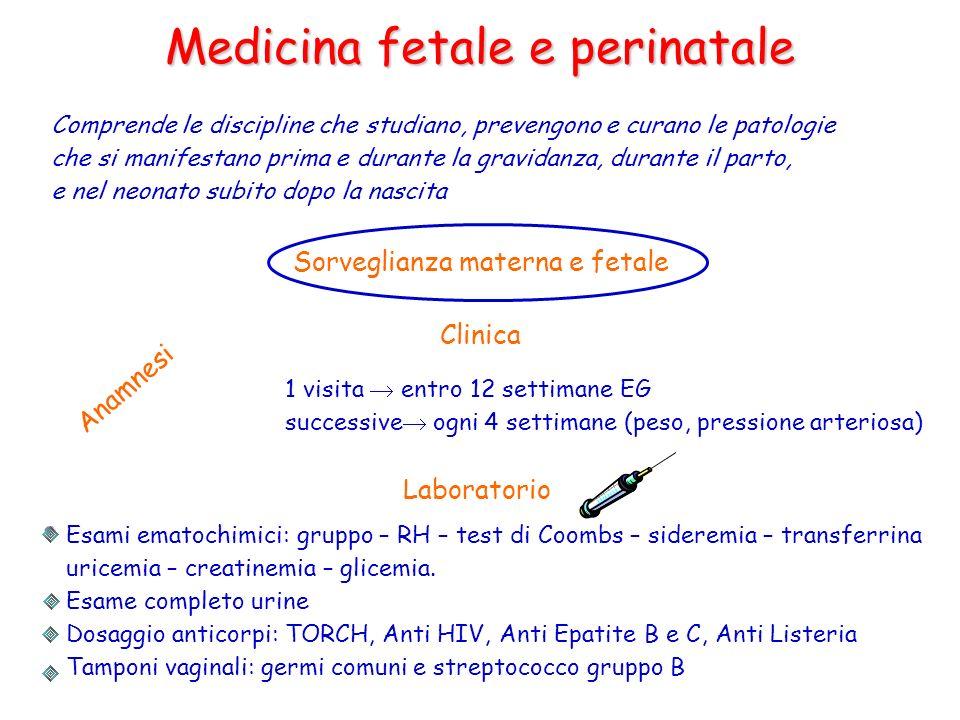 Medicina fetale e perinatale Comprende le discipline che studiano, prevengono e curano le patologie che si manifestano prima e durante la gravidanza,