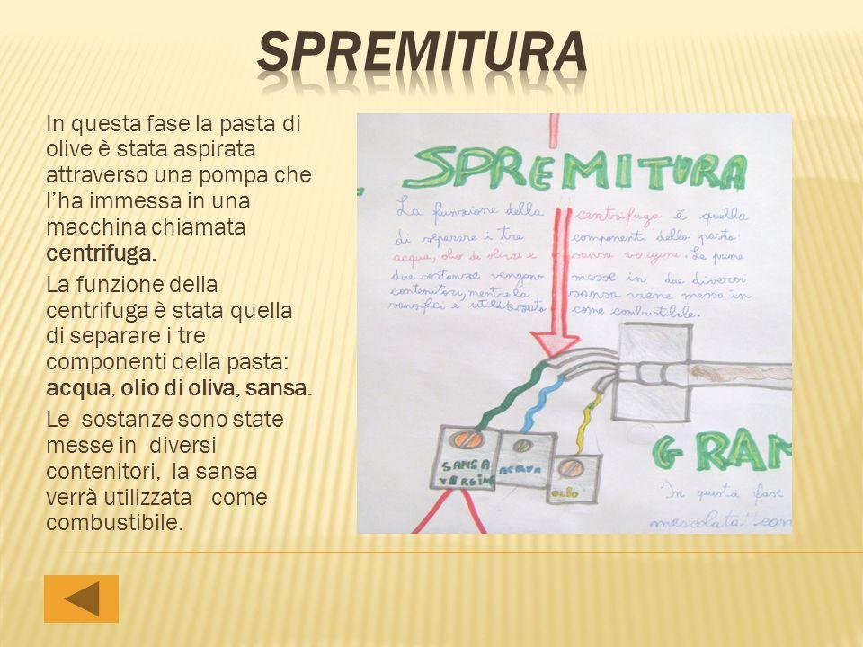 In questa fase la pasta di olive è stata aspirata attraverso una pompa che lha immessa in una macchina chiamata centrifuga. La funzione della centrifu