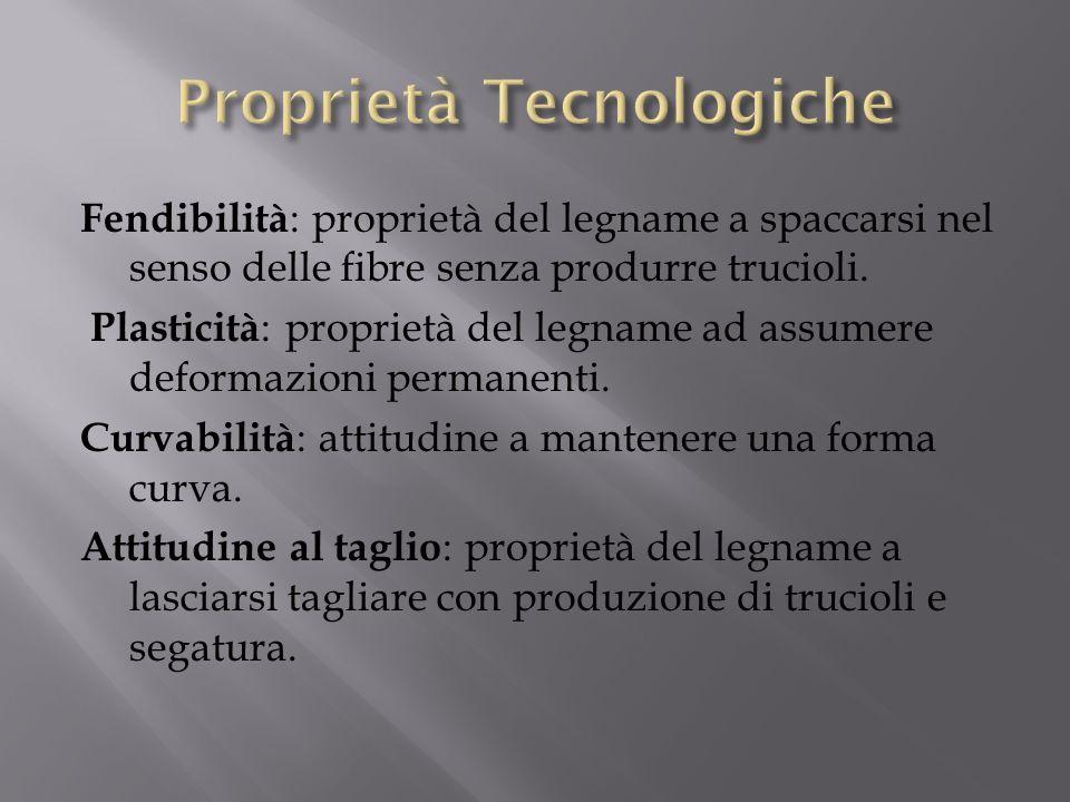 Fendibilità : proprietà del legname a spaccarsi nel senso delle fibre senza produrre trucioli. Plasticità : proprietà del legname ad assumere deformaz