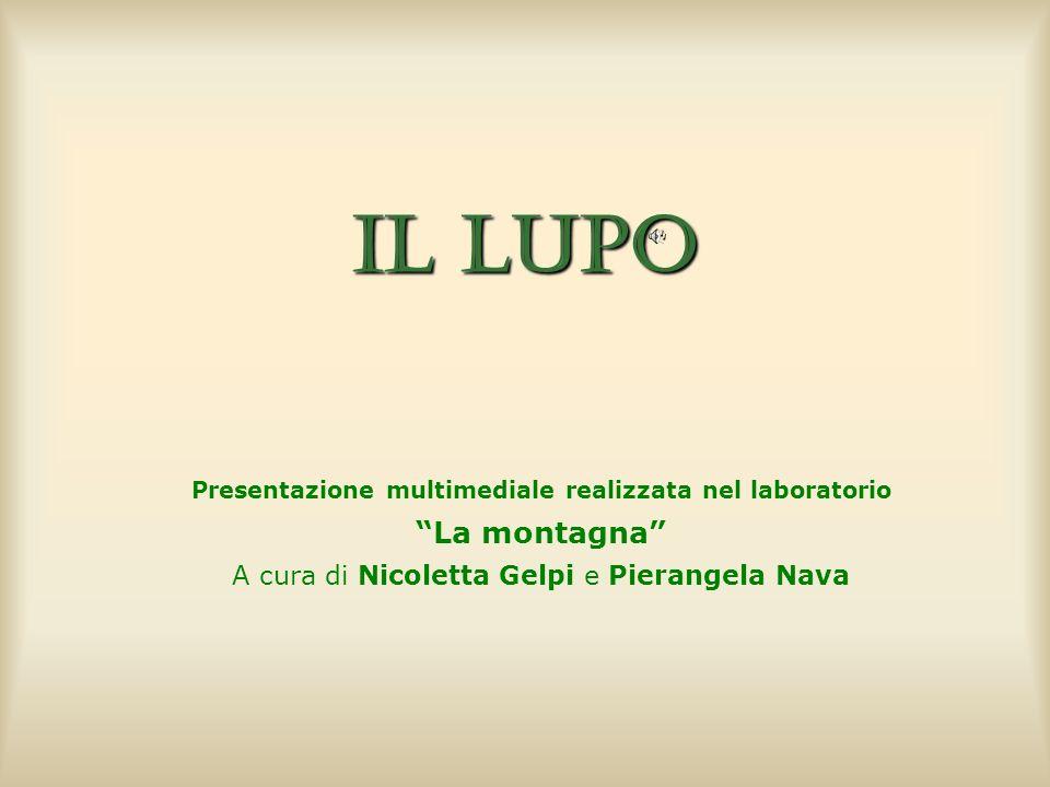 Il lupo Presentazione multimediale realizzata nel laboratorio La montagna A cura di Nicoletta Gelpi e Pierangela Nava