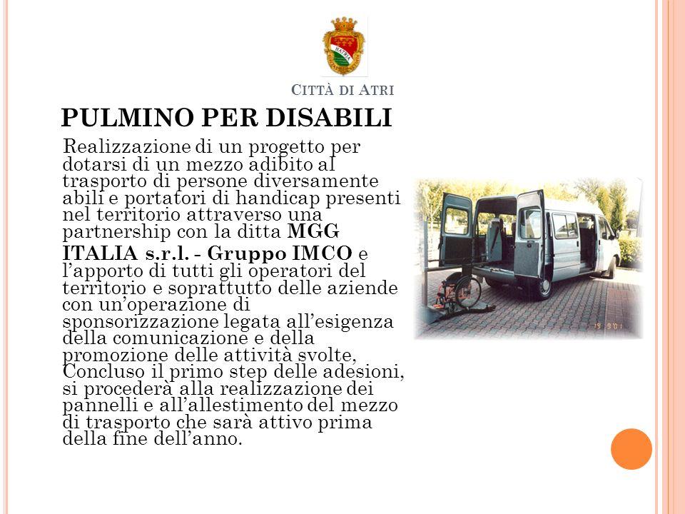 PULMINO PER DISABILI Realizzazione di un progetto per dotarsi di un mezzo adibito al trasporto di persone diversamente abili e portatori di handicap presenti nel territorio attraverso una partnership con la ditta MGG ITALIA s.r.l.