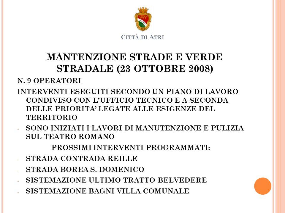 MANTENZIONE STRADE E VERDE STRADALE (23 OTTOBRE 2008) N.