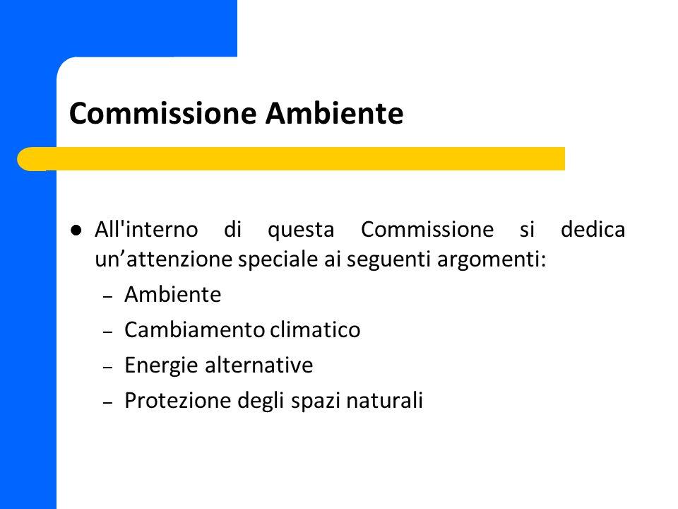 Commissione Ambiente All'interno di questa Commissione si dedica unattenzione speciale ai seguenti argomenti: – Ambiente – Cambiamento climatico – Ene