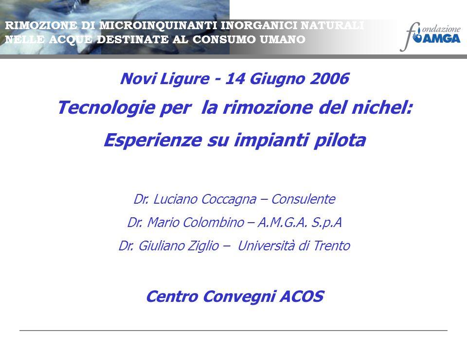 Tecnologie per la rimozione del nichel: Esperienze su impianti pilota Dr. Luciano Coccagna – Consulente Dr. Mario Colombino – A.M.G.A. S.p.A Dr. Giuli