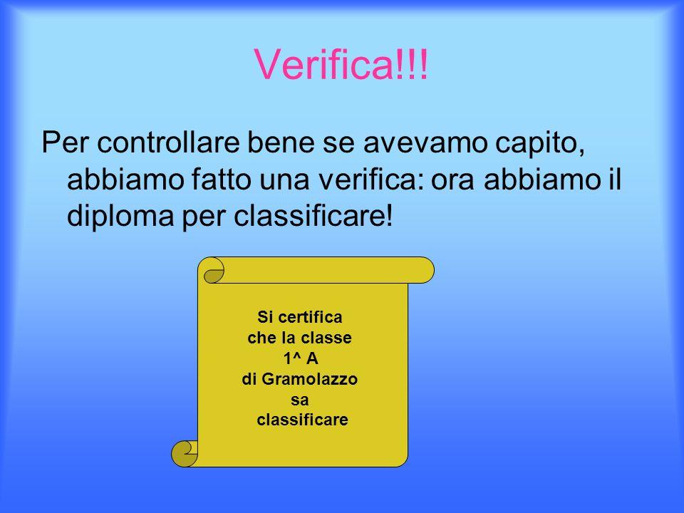 Verifica!!! Per controllare bene se avevamo capito, abbiamo fatto una verifica: ora abbiamo il diploma per classificare! Si certifica che la classe 1^