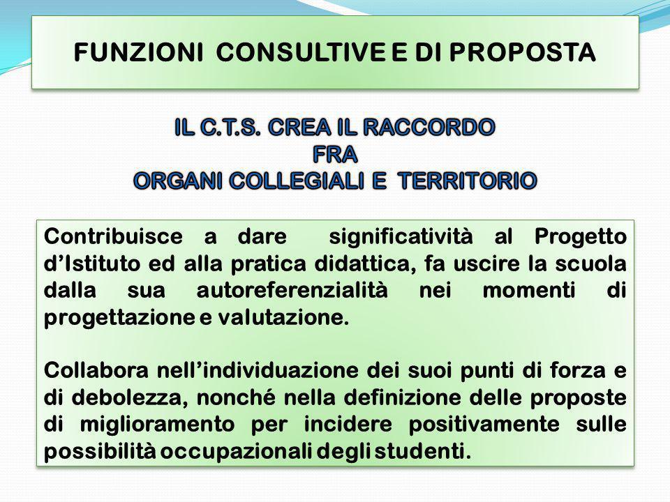 CTS DISTITUTO Struttura flessibile CTS DI RETE Il C.T.S.
