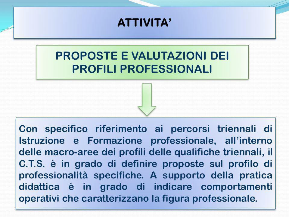 PROPOSTE E VALUTAZIONI DEI PROFILI PROFESSIONALI Con specifico riferimento ai percorsi triennali di Istruzione e Formazione professionale, allinterno delle macro-aree dei profili delle qualifiche triennali, il C.T.S.