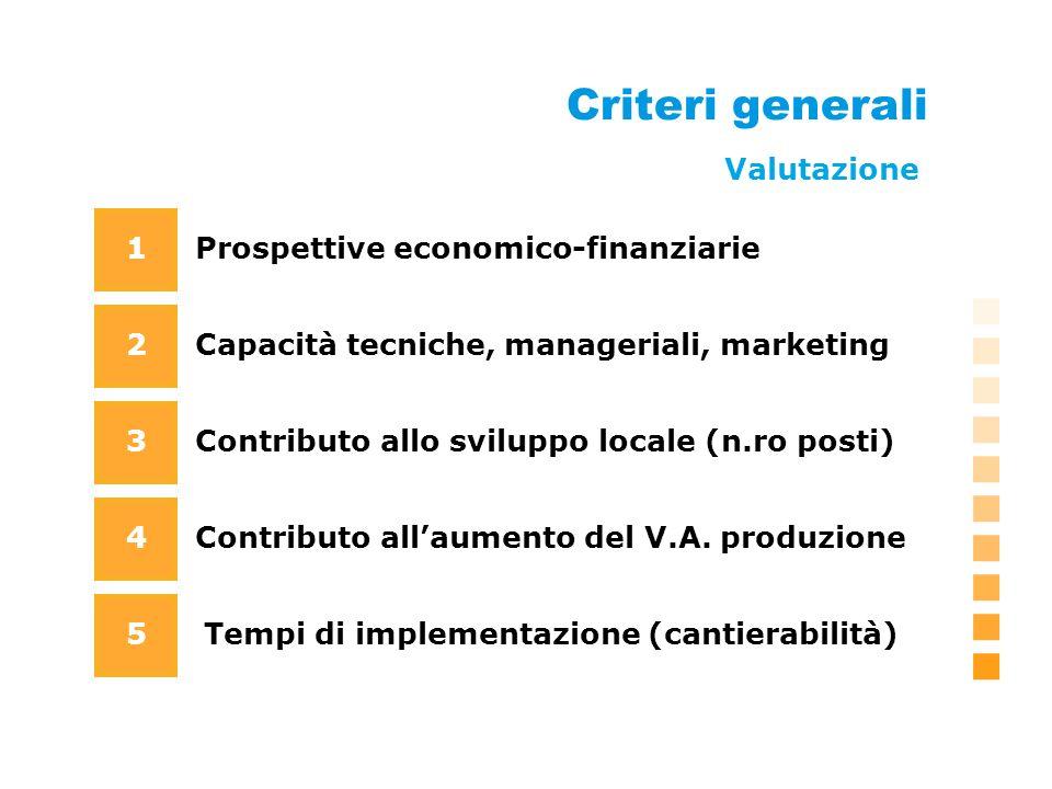 Criteri generali Prospettive economico-finanziarie Capacità tecniche, manageriali, marketing 1 2 3 4 Contributo allo sviluppo locale (n.ro posti) Contributo allaumento del V.A.