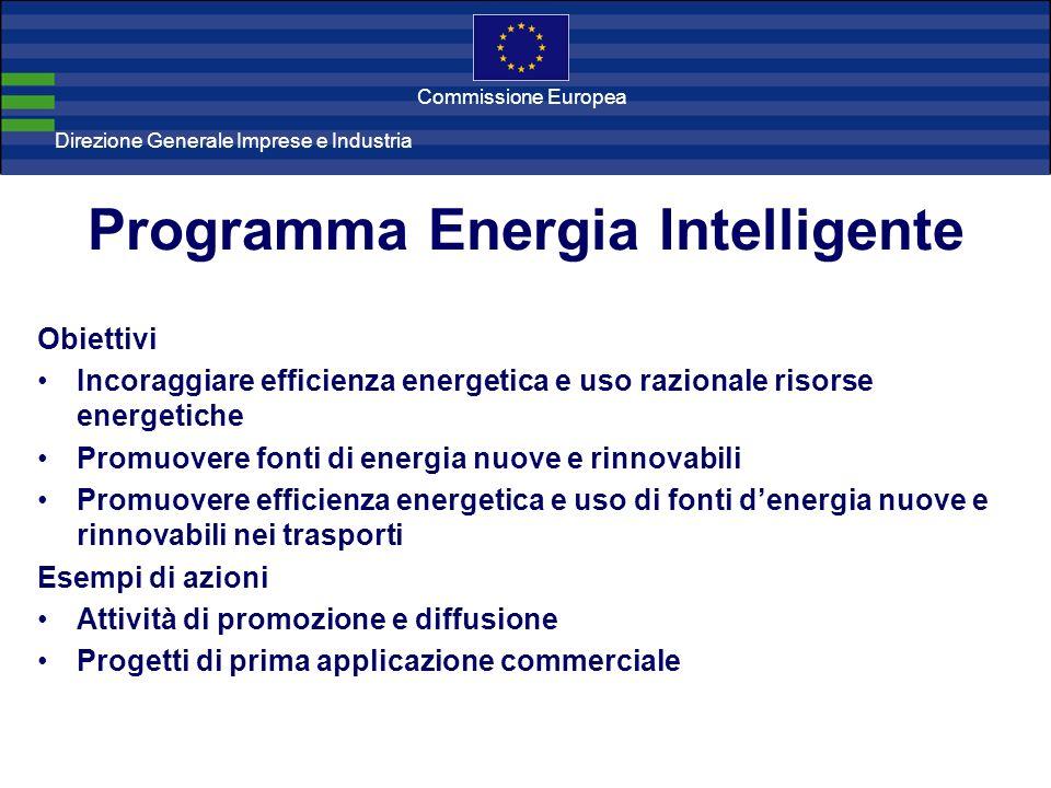 Direzione Generale Imprese Direzione Generale Imprese e Industria Commissione Europea Programma Energia Intelligente Obiettivi Incoraggiare efficienza