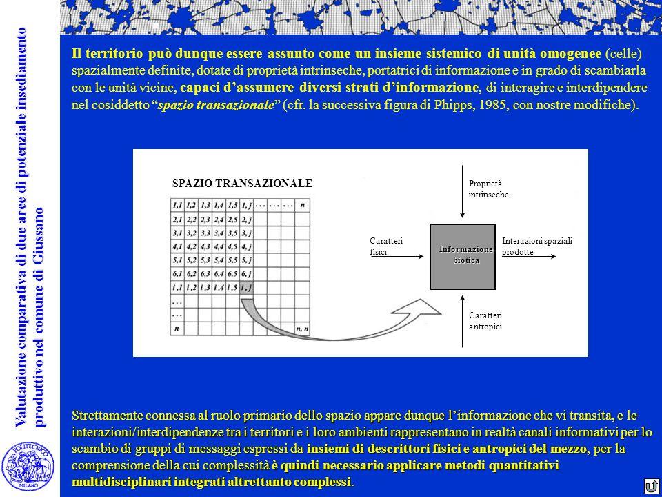 Informazione biotica Proprietà intrinseche Caratteri antropici Caratteri fisici Interazioni spaziali prodotte SPAZIO TRANSAZIONALE Il territorio può d