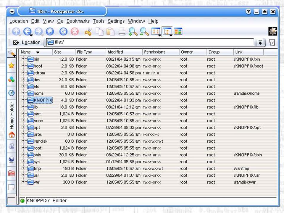 Il File System / Directory Radice (root): contiene il Kernel predefinito e non dovrebbero esserci altri file al suo interno.