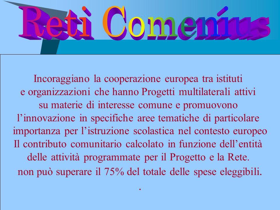 Incoraggiano la cooperazione europea tra istituti e organizzazioni che hanno Progetti multilaterali attivi su materie di interesse comune e promuovono