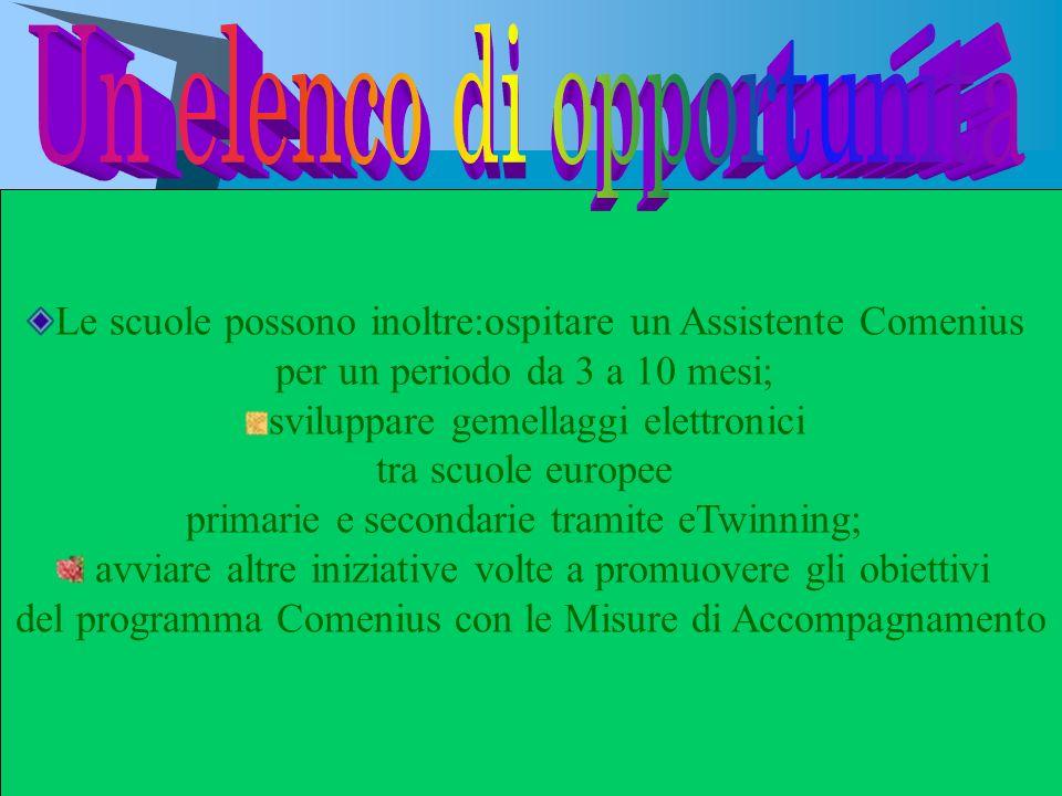 Le scuole possono inoltre:ospitare un Assistente Comenius per un periodo da 3 a 10 mesi; sviluppare gemellaggi elettronici tra scuole europee primarie