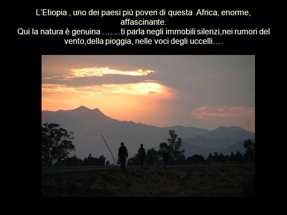 LEtiopia, uno dei paesi più poveri di questa Africa, enorme, affascinante. Qui la natura è genuina …….ti parla negli immobili silenzi,nei rumori del v