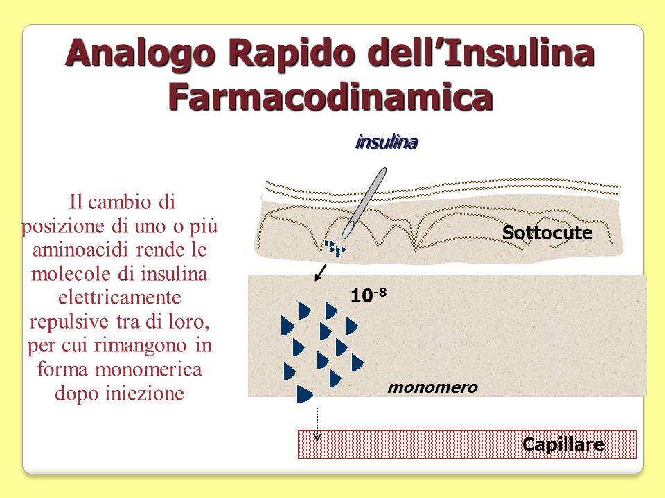 Analogo Rapido dellInsulina Farmacodinamicainsulina Capillare Sottocute monomero 10 -8 Il cambio di posizione di uno o più aminoacidi rende le molecol
