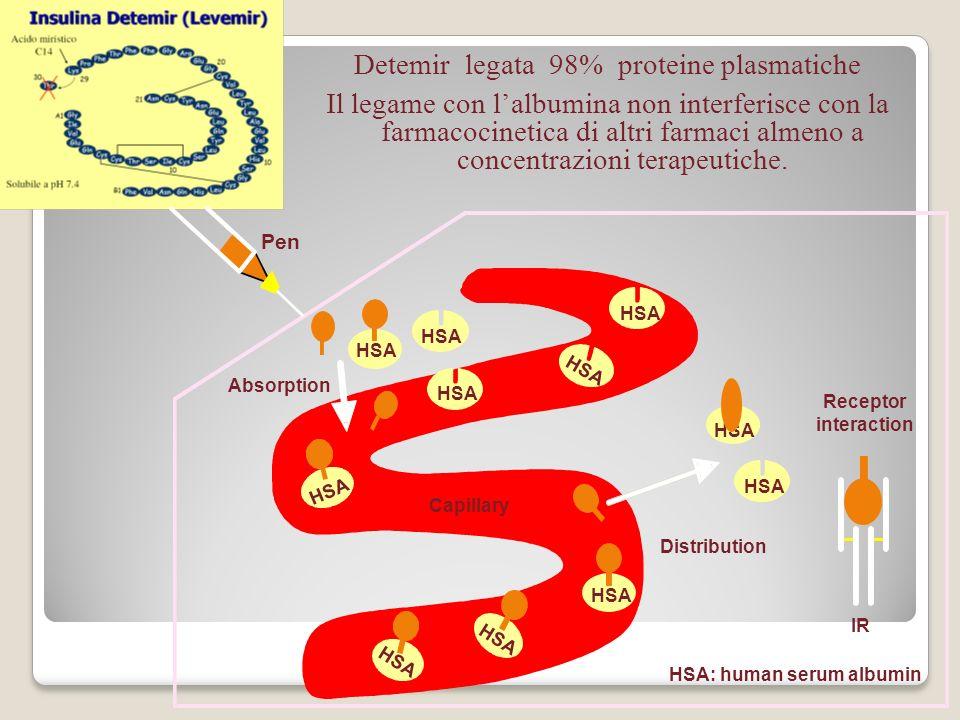 HSA: human serum albumin Distribution Absorption Receptor interaction HSA Pen HSA Capillary HSA IR Detemir legata 98% proteine plasmatiche Il legame c
