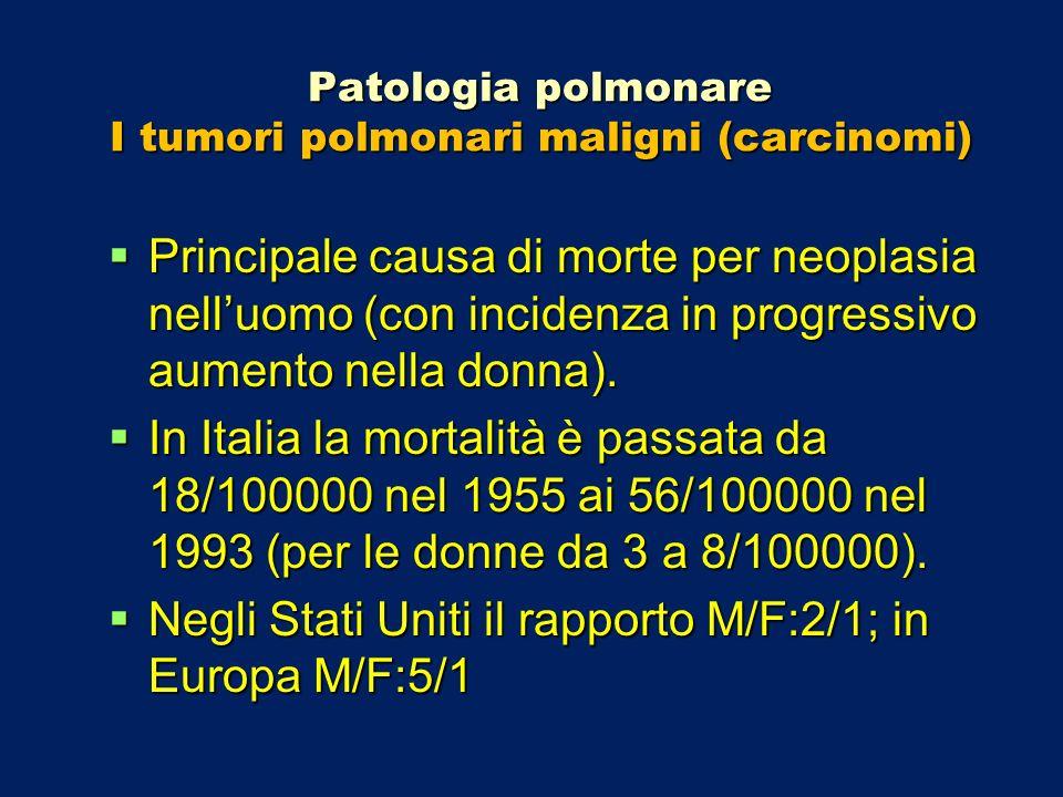 Patologia polmonare I tumori polmonari maligni (carcinomi) Principale causa di morte per neoplasia nelluomo (con incidenza in progressivo aumento nell