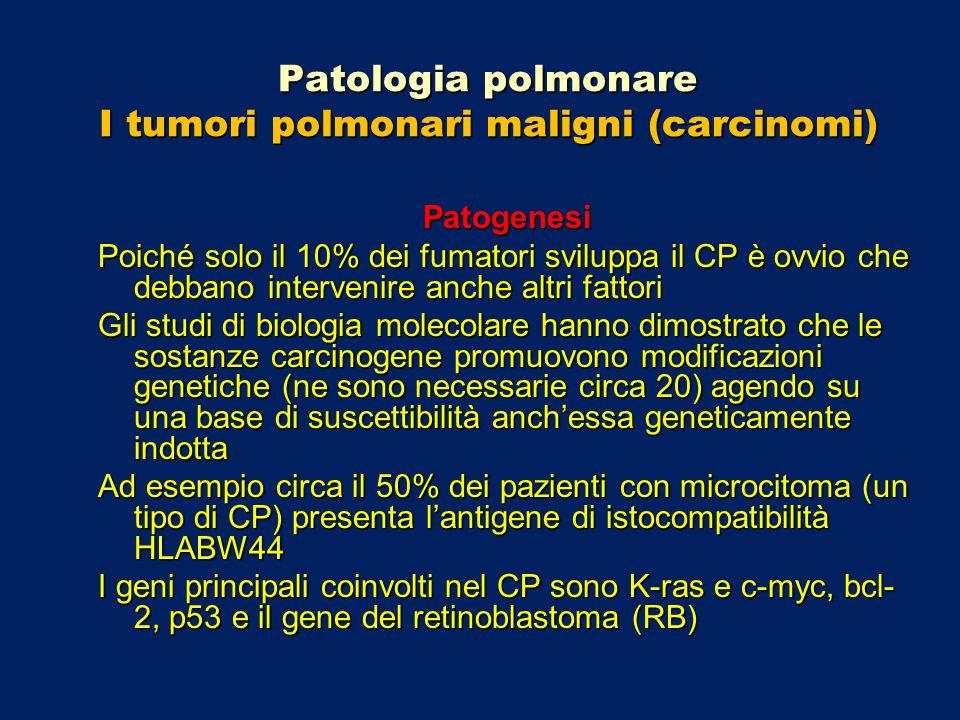 Patologia polmonare I tumori polmonari maligni (carcinomi) Patogenesi Poiché solo il 10% dei fumatori sviluppa il CP è ovvio che debbano intervenire a