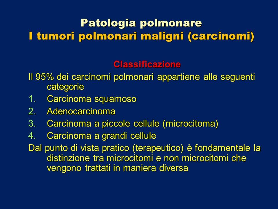 Patologia polmonare I tumori polmonari maligni (carcinomi) Classificazione Il 95% dei carcinomi polmonari appartiene alle seguenti categorie 1.Carcino