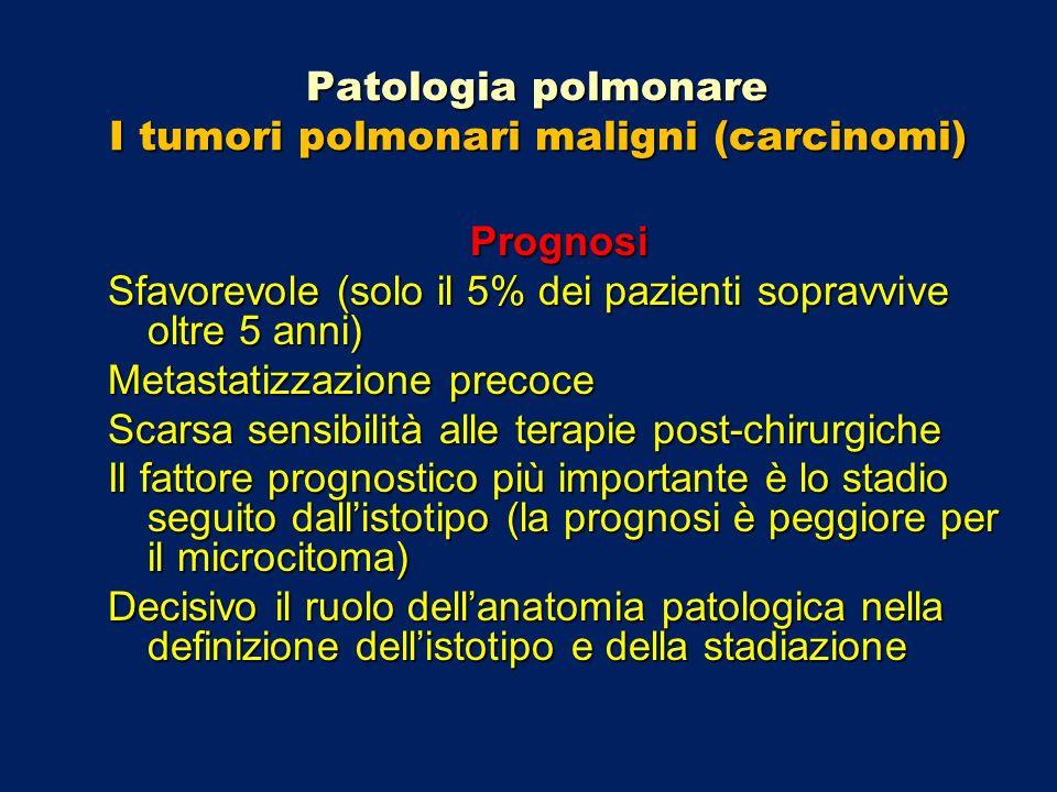 Patologia polmonare I tumori polmonari maligni (carcinomi) Prognosi Sfavorevole (solo il 5% dei pazienti sopravvive oltre 5 anni) Metastatizzazione pr