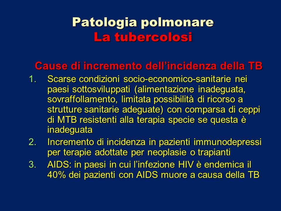 Patologia polmonare La tubercolosi Fasce di popolazione a rischio elevato di TB Diabetici Pazienti in terapia con farmaci immunosoppressori Pazienti affetti da silicosi Immigrati da paesi extra-europei Detenuti in carceri sovra-affollate Personale ospedaliero, dentisti