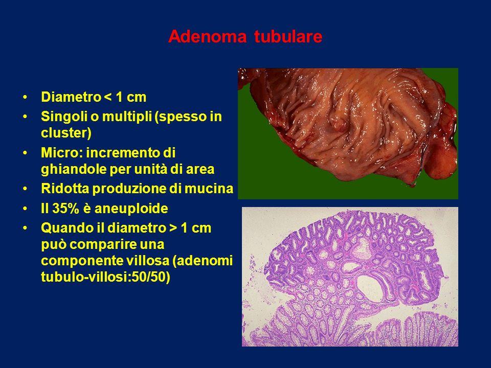 Adenoma tubulare Diametro < 1 cm Singoli o multipli (spesso in cluster) Micro: incremento di ghiandole per unità di area Ridotta produzione di mucina