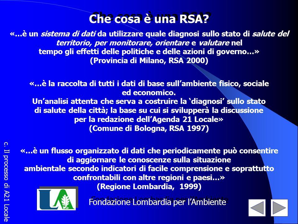 Che cosa è una RSA? «…è un sistema di dati da utilizzare quale diagnosi sullo stato di salute del territorio, per monitorare, orientare e valutare nel
