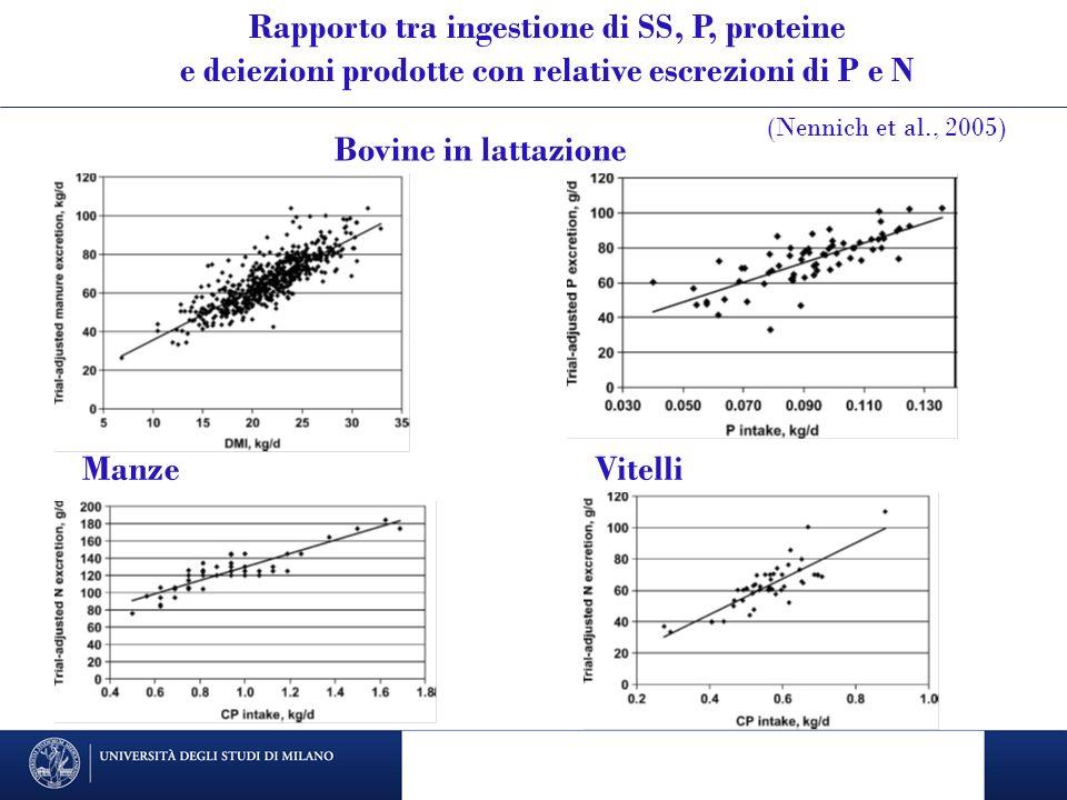 Bovine in lattazione ManzeVitelli Rapporto tra ingestione di SS, P, proteine e deiezioni prodotte con relative escrezioni di P e N (Nennich et al., 20