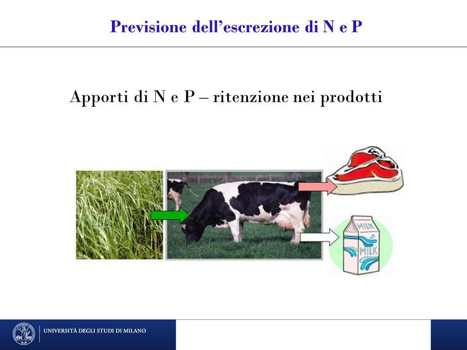 Previsione dellescrezione di N e P Apporti di N e P – ritenzione nei prodotti