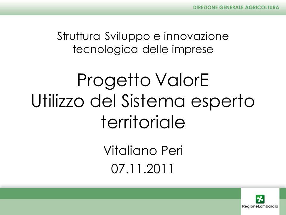 Struttura Sviluppo e innovazione tecnologica delle imprese Progetto ValorE Utilizzo del Sistema esperto territoriale Vitaliano Peri 07.11.2011