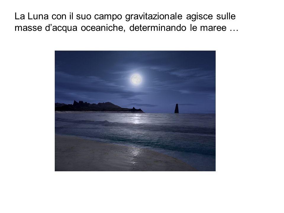 La Luna con il suo campo gravitazionale agisce sulle masse dacqua oceaniche, determinando le maree …